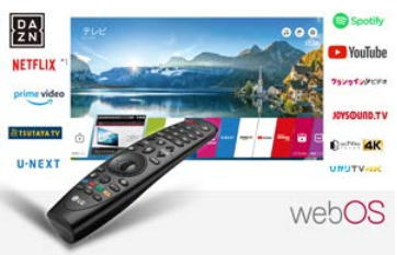 [OLED65B8SJB]LG【65V型】有機ELテレビがコレ!ブルーレイだとさらにキレイ!
