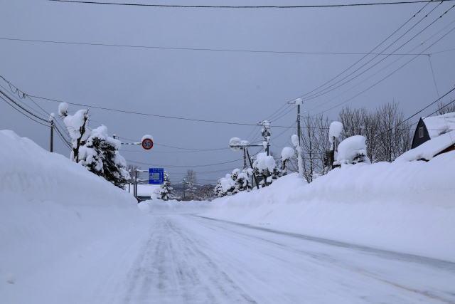 屋根[雪下ろし]のコツと目安!屋根の雪下ろしの相場と注意したい事故!